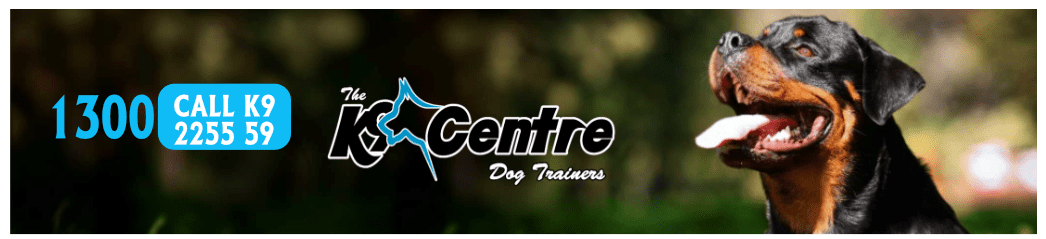 dog training specialist dog training Australia dog training DOG TRAINING dog training speciialist dog training Australia