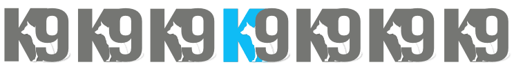 K9 Smart Dog Training Programs dog trainer Australia