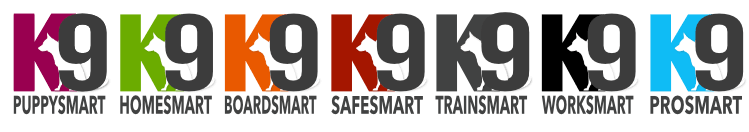 K9 Smart Programs dog training for all k9 situations dog trainer Australia