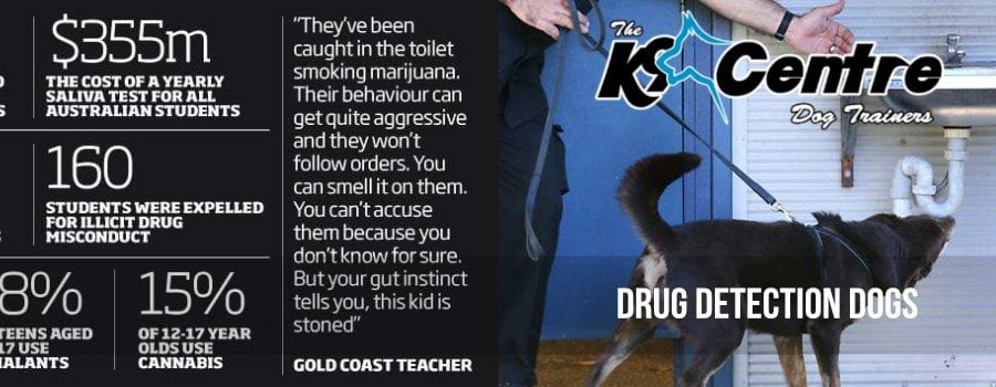 Drug Dogs Used to combat drugs in schools and the workplace dog trainer Australia