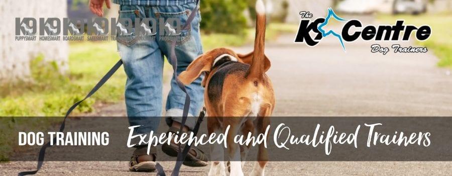 In Home Dog Training with The K9 Centre Brisbane QLD Australia dog trainer Australia