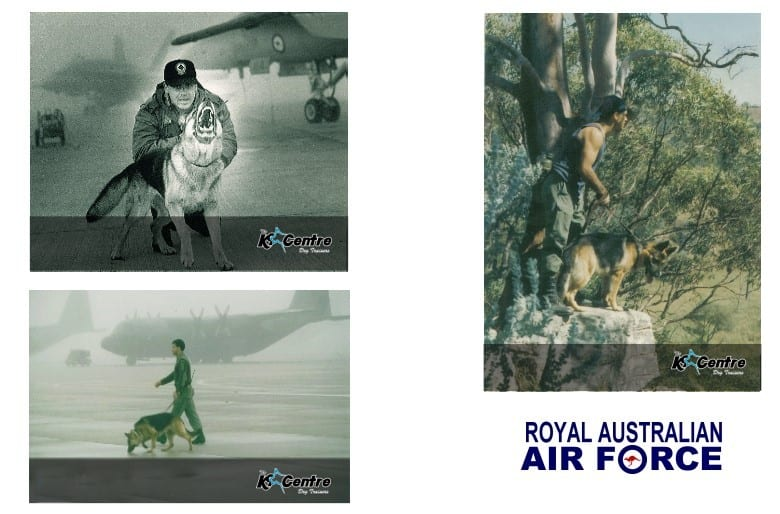 Martin-Dominick-Royal-Australian-Air-Force2-2-large dog trainer Australia