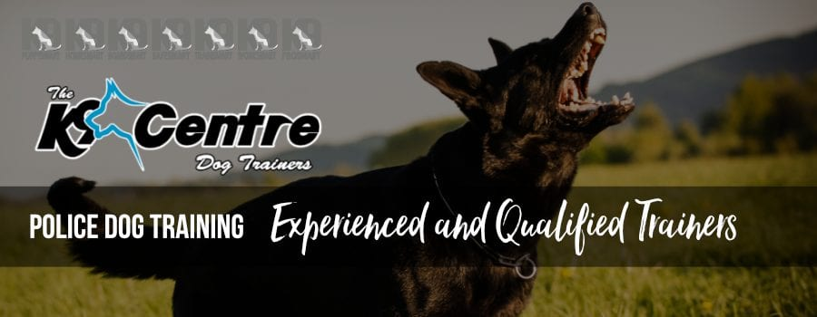 POLICE DOG TRAINING FOR UNITS BY EXPERIENCED DOG TRAINERS dog trainer Australia