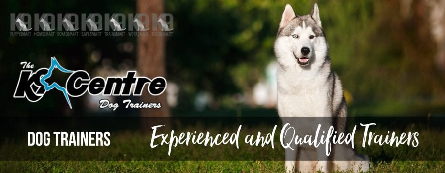The K9 Centre Dog Trainer Join Us today dog trainer Australia