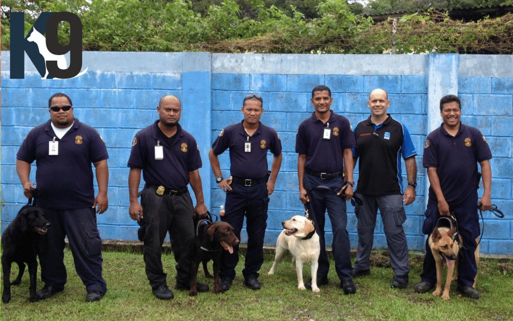 Customs Drug Detection Dog