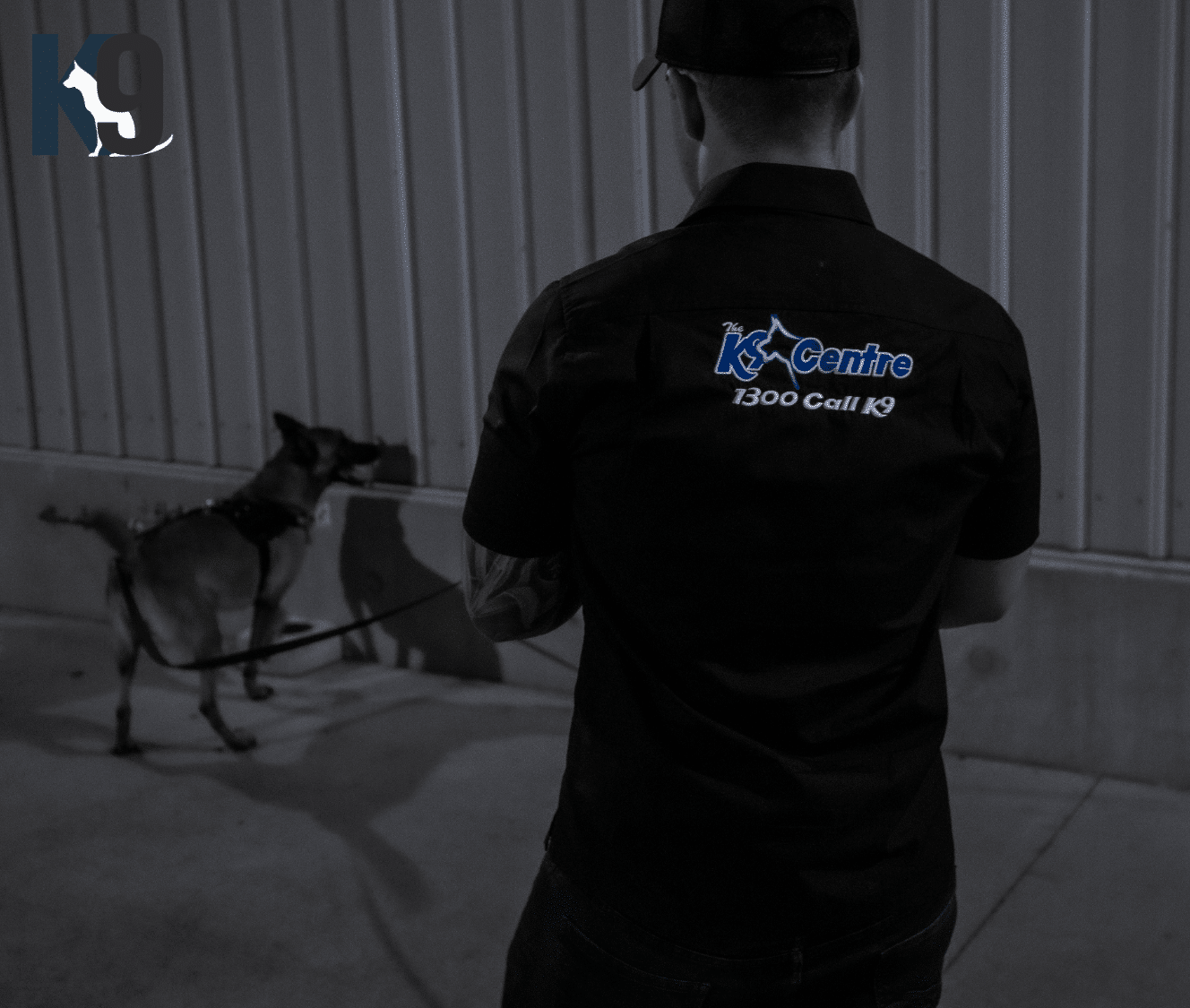 Detection Dog Services and Detection Dog Handler Training