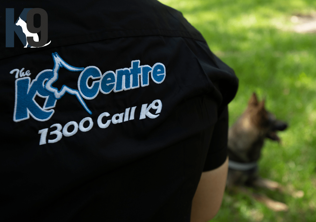 Dog Training Franchise 2